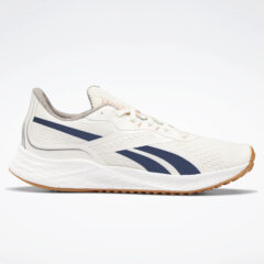 Reebok Sport Reebok Sport Floatride Energy Grow Ανδρικά Παπούτσια Για Τρέξιμο (9000069207_50225)