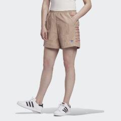 adidas Originals adidas Originals Adicolor Large Logo Γυναικείο Σορτς (9000058501_47292)