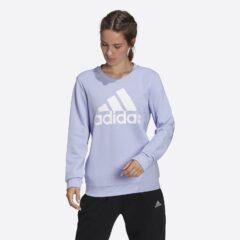 adidas Performance adidas Performance Essentials Relaxed Γυναικεία Μπλούζα με Μακρύ Μανίκι (9000084366_54119)