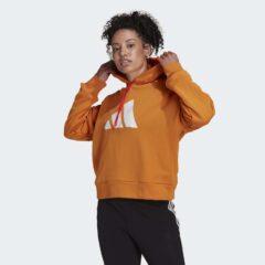 adidas Performance adidas Performance Future Icon Γυναικείο Φούτερ με Κουκούλα (9000084650_54543)