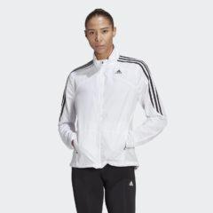 adidas Performance adidas Performance Marathon 3-Stripes Γυναικείο Αντιανεμικό Μπουφάν (9000074115_1539)